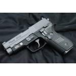 WE 228 Gas Blowback Pistol
