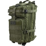 Stealth Pack - 25ltr - Olive Green